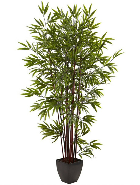 6' Bamboo Silk Tree with Planter