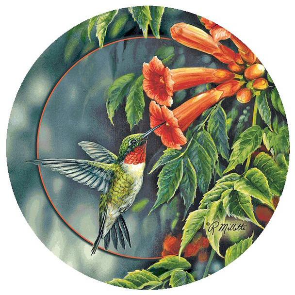 Hummingbird and Trumpet Vine Round Beverage Coasters, Set of 12