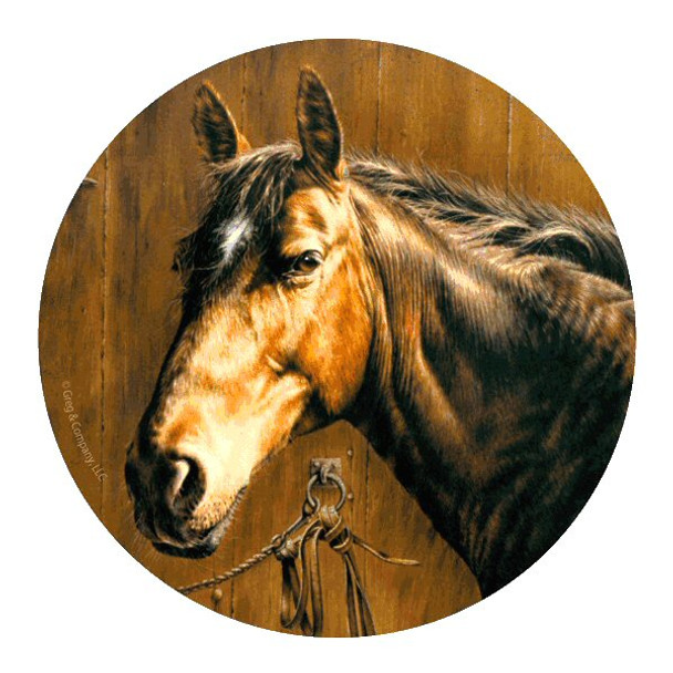 Horse Portrait Round Beverage Coasters by Greg & Company, Set of 8