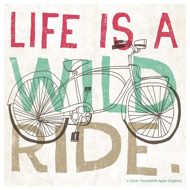 Life is a Wild Ride Bicycle Absorbent Beverage Coasters, Set of 12