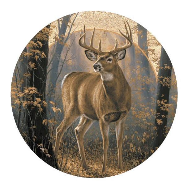 Woodland Mist Deer Sandstone Coasters by Rosemary Millette, Set of 8