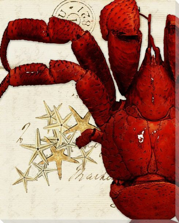 Left Half of Crab Wrapped Canvas Giclee Print Wall Art