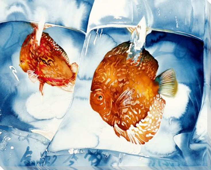 Bagged Joy Fish Wrapped Canvas Giclee Print Wall Art