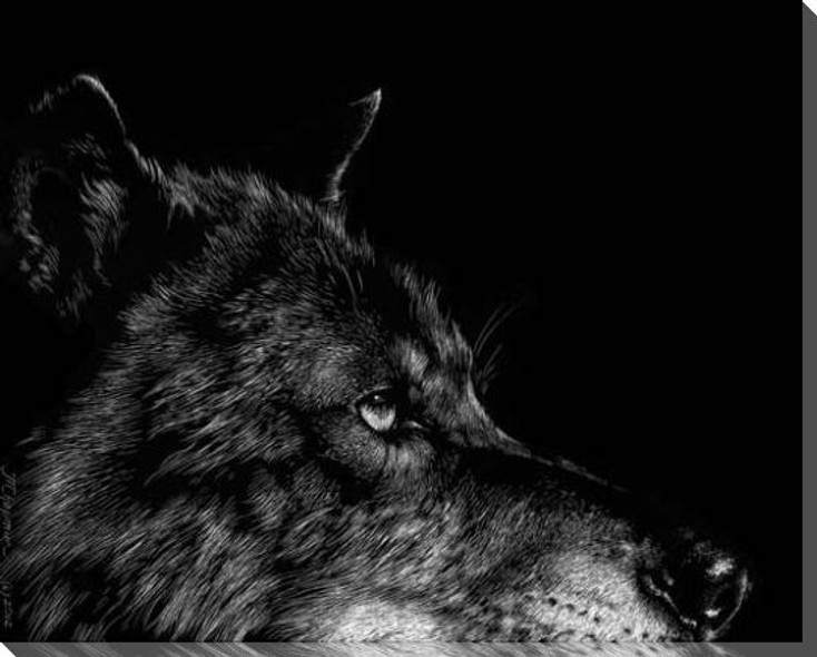 Black Wolf Head Wrapped Canvas Giclee Print Wall Art