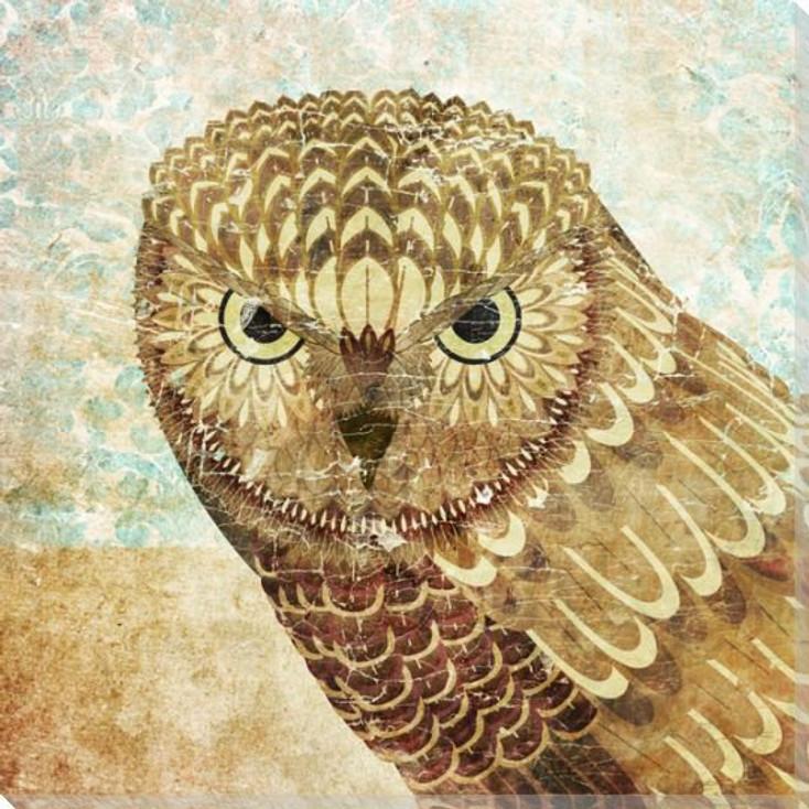 Owl Bird III Wrapped Canvas Giclee Print Wall Art