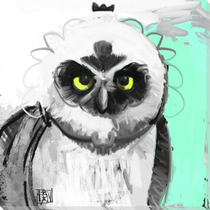 Owl Bird 5 Wrapped Canvas Giclee Print Wall Art