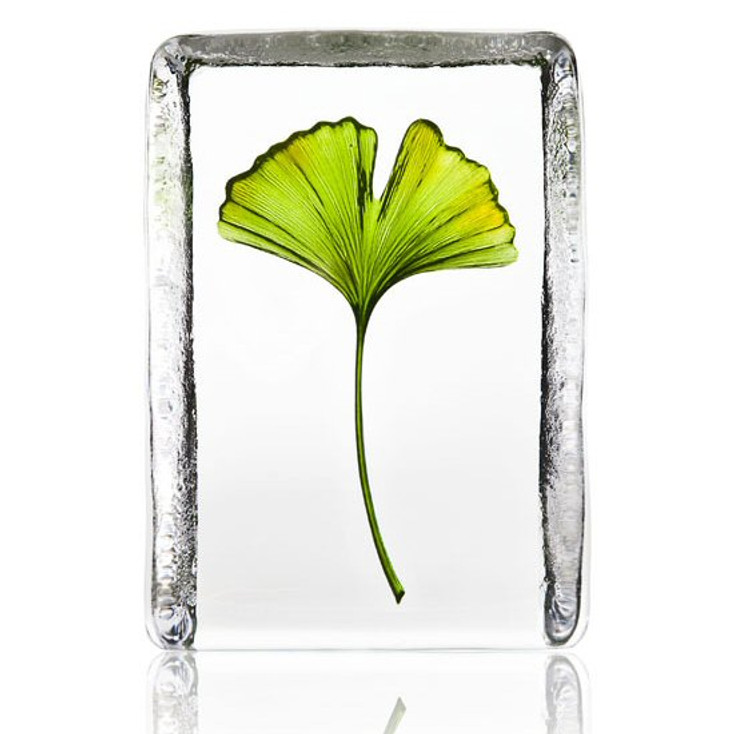 Gingko Etched Painted Crystal Sculpture by Mats Jonasson