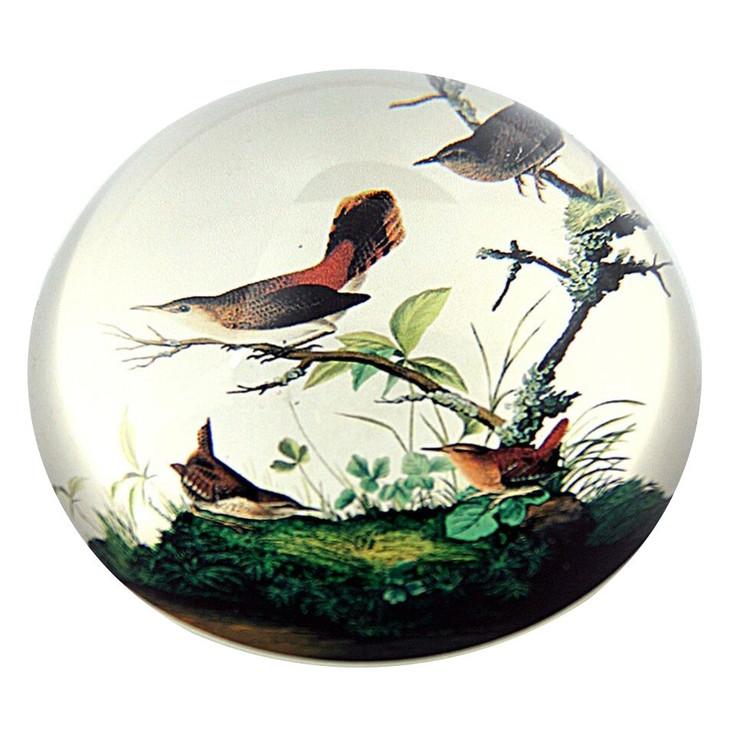 Winter Wren Birds Glass Paperweight by JJ Audubon