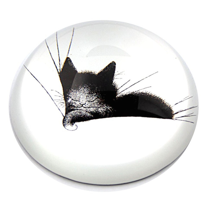 Kitty Sleeping on a Pillow Glass Paperweight by Albert Dubout