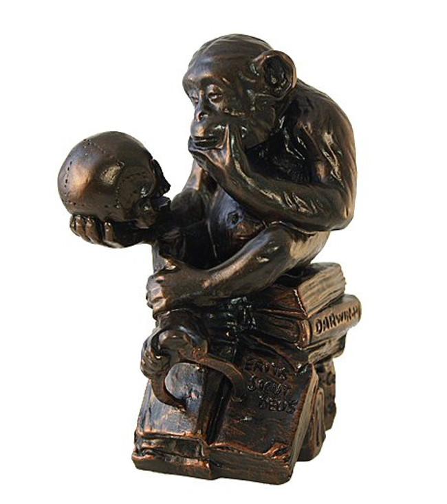 Monkey with Skull Statue by Rheinhold