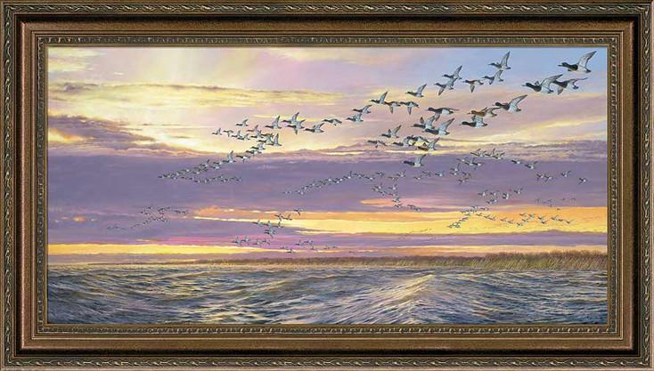 Grand Passage Canvasback Ducks Framed Canvas Giclee Art Print