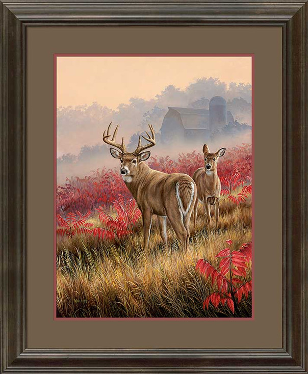 Lifting Fog Whitetail Deer Framed Art Print Wall Art