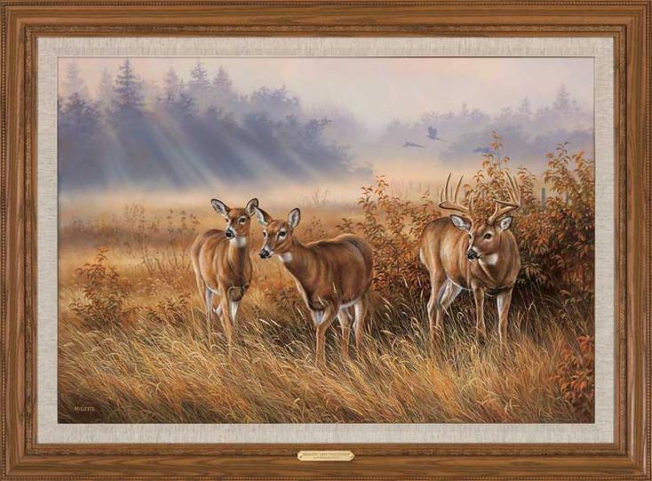 Limited Edition Whitetail Deer Framed Canvas Art Print Wall Art