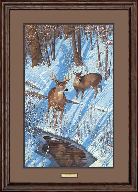 Shadows of Bowhunting Whitetail Deer Framed Art Print Wall Art