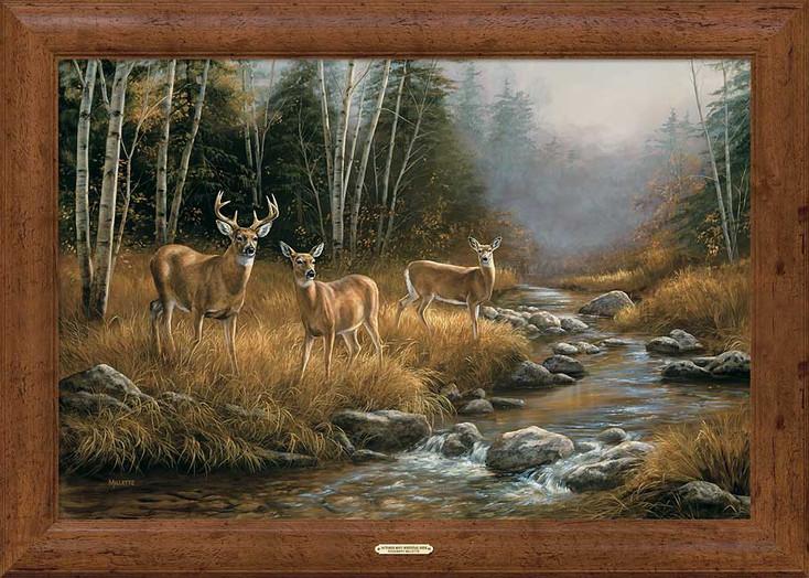 October Mist Whitetail Deer Framed Canvas Art Print Wall Art