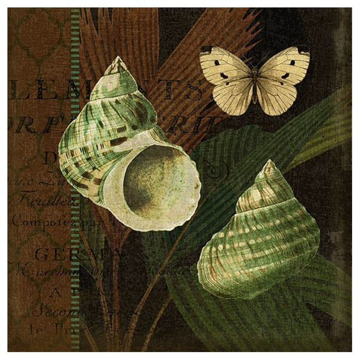 Trinidad 5 Seashells and Butterfly Vintage Style Metal Sign
