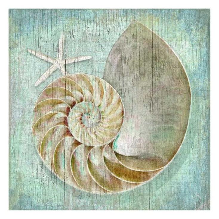 Nautilus Seashell and Starfish Vintage Style Wooden Sign