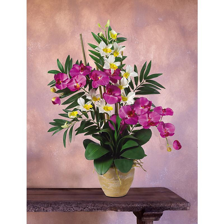 Double Phal / Dendrobium Silk Orchids - Orchid Cream