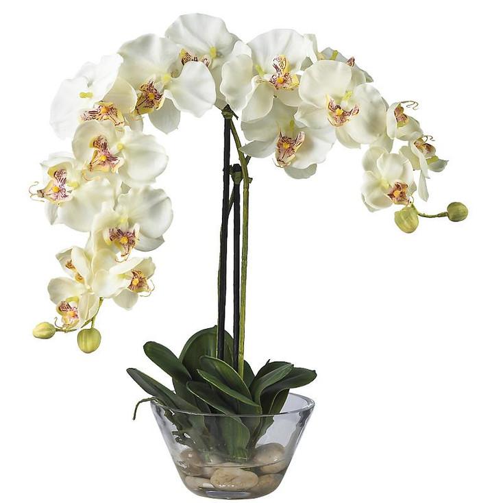 Phalaenopsis Silk Arrangement with Vase - White
