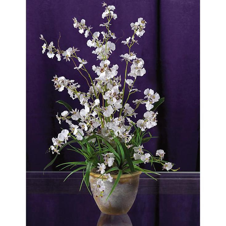 Dancing Lady Silk Orchid Arrangement - White