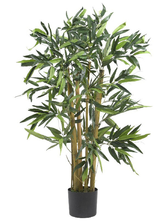 3' Biggy Bamboo Silk Tree