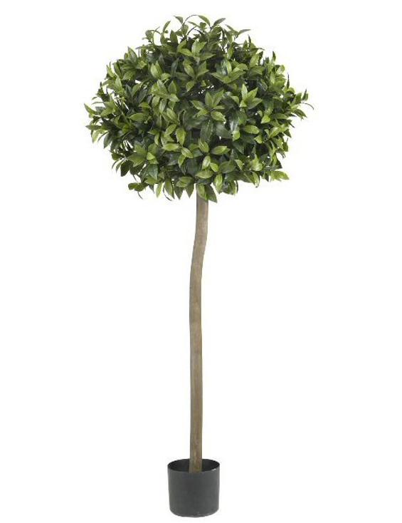 5' Sweet Bay Ball Topiary Silk Tree