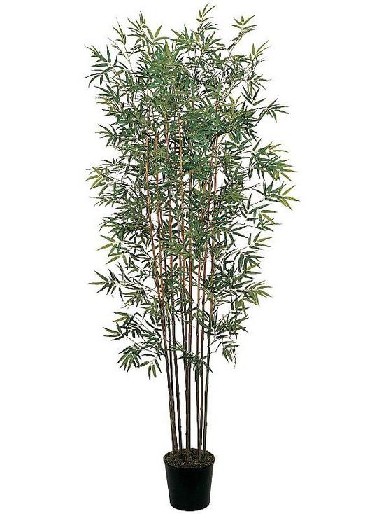 6' Mini Bamboo Silk Tree