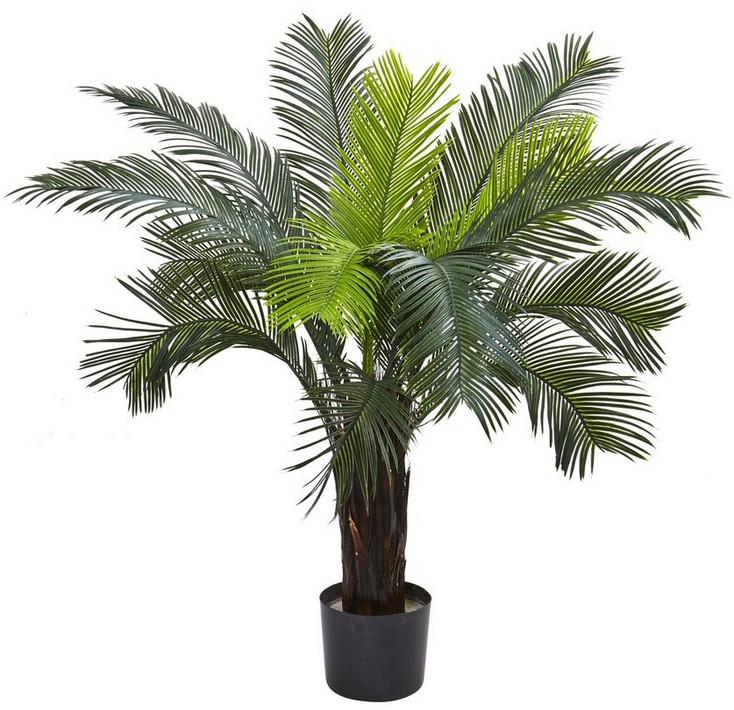 3' Cycas Silk Tree UV Resistant, Indoor Outdoor
