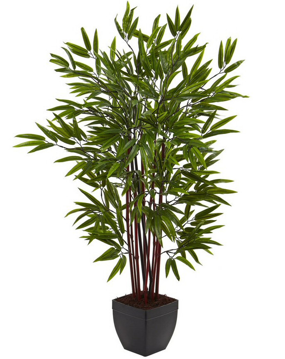 4' Bamboo Silk Tree with Planter