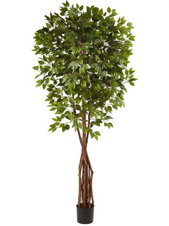 7.5' Super Deluxe Ficus Silk Tree