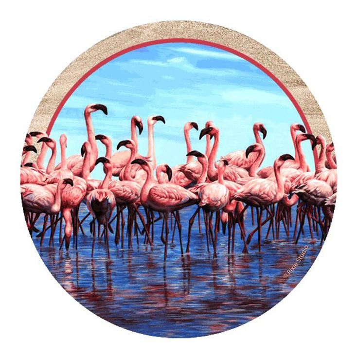 Flamingos Sandstone Beverage Coasters by Pixie Studio, Set of 8