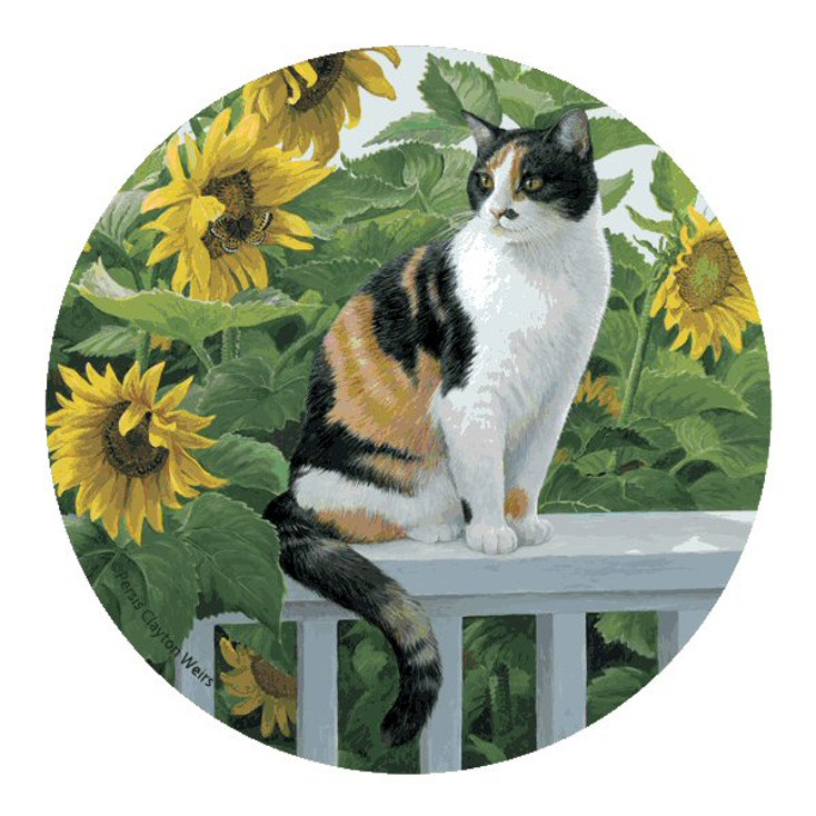 Cat and Sunflowers Sandstone Coasters by P. Clayton Weirs, Set of 8