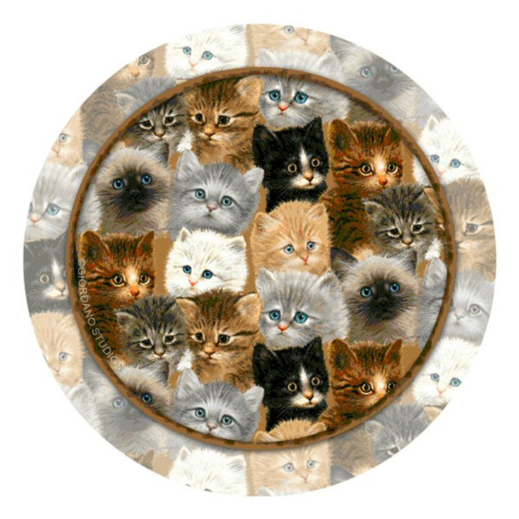 Kittens Absorbent Beverage Coasters by Giordano Studios, Set of 8