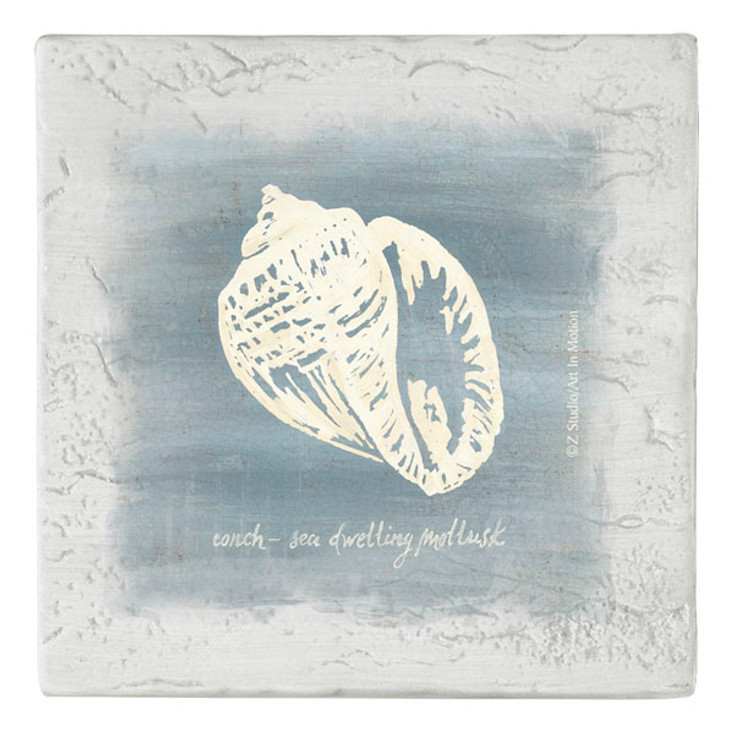Imperial Conch Shell Beverage Coasters, Set of 8