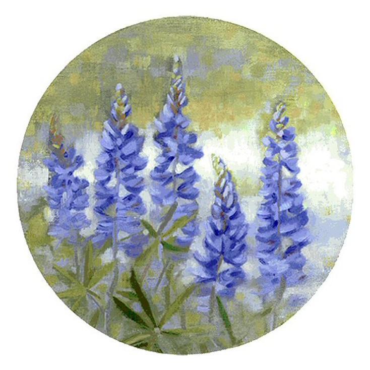 Bluebonnets Flowers Sandstone Beverage Coasters, Set of 8