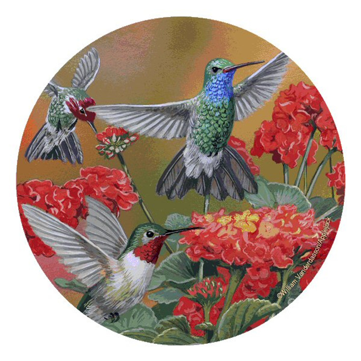 Hummingbirds & Flower Beverage Coasters by W. Vanderdasson, Set of 12