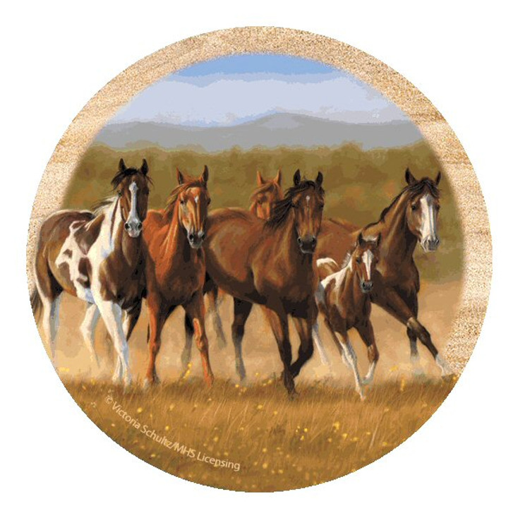 First Run Horses Sandstone Coasters by Victoria Schultz, Set of 8