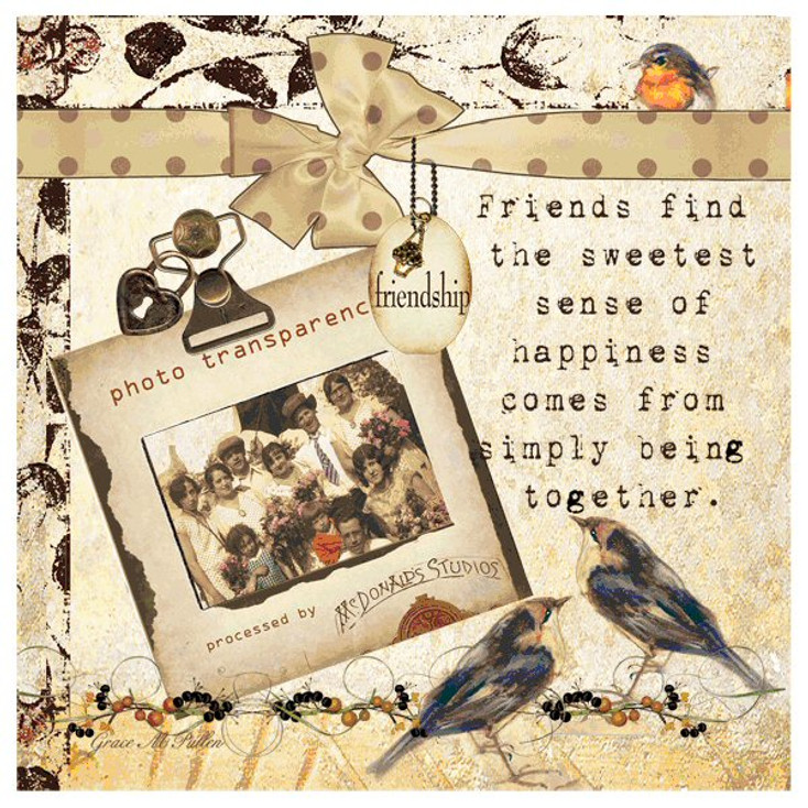 Friendship Absorbent Beverage Coasters by Grace Pullen, Set of 12
