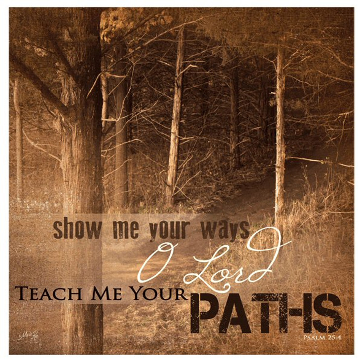 Teach Me Your Paths Absorbent Beverage Coasters, Set of 12