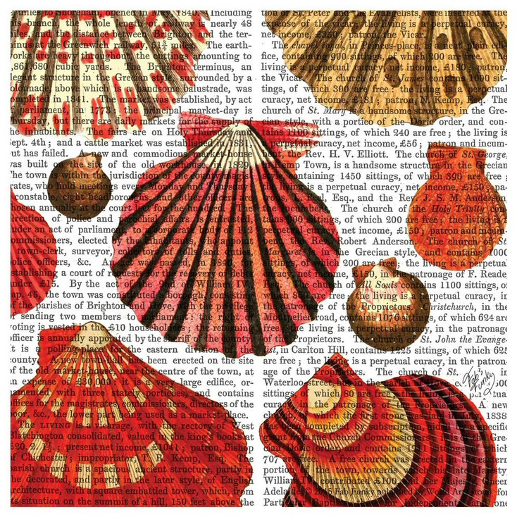 Red Clam Shells Print Absorbent Beverage Coasters, Set of 12