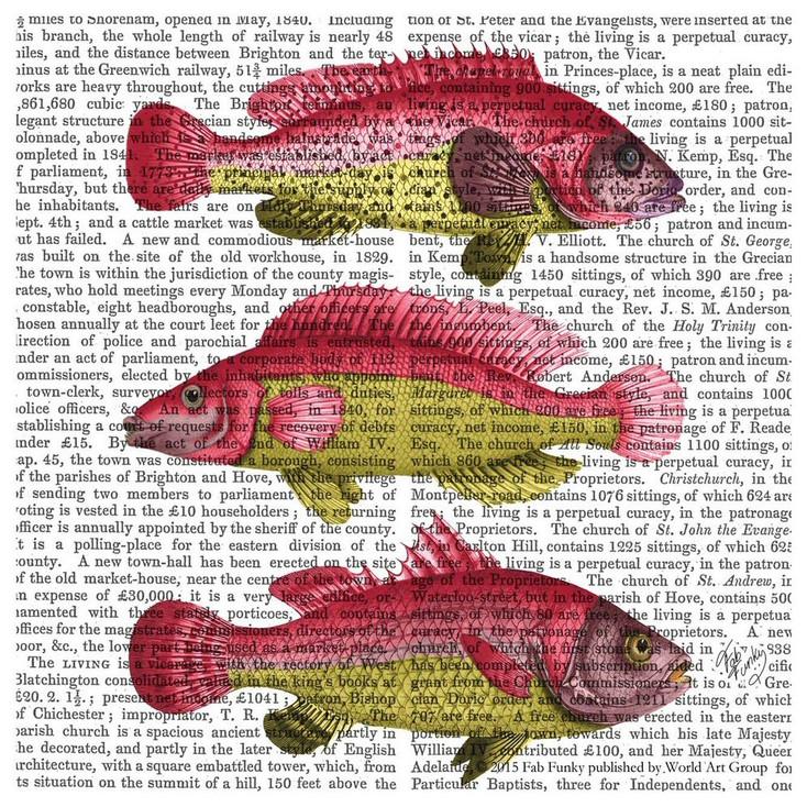 Red & Yellow Fantasy Fish Trio Print Beverage Coasters, Set of 12