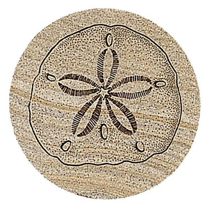 Sand Dollar Sandstone Beverage Coasters, Set of 8