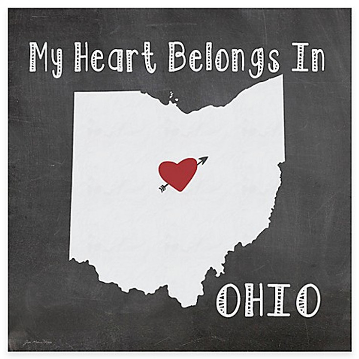 My Heart Belongs In Ohio Absorbent Beverage Coasters, Set of 8