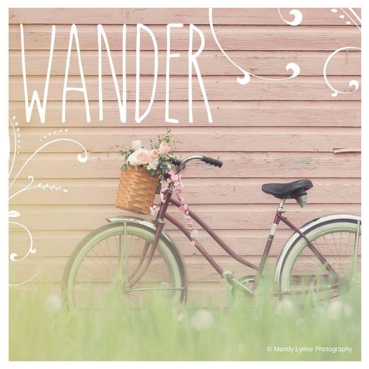 Wander Dreaming of Spring Bicycle Beverage Coasters, Set of 12