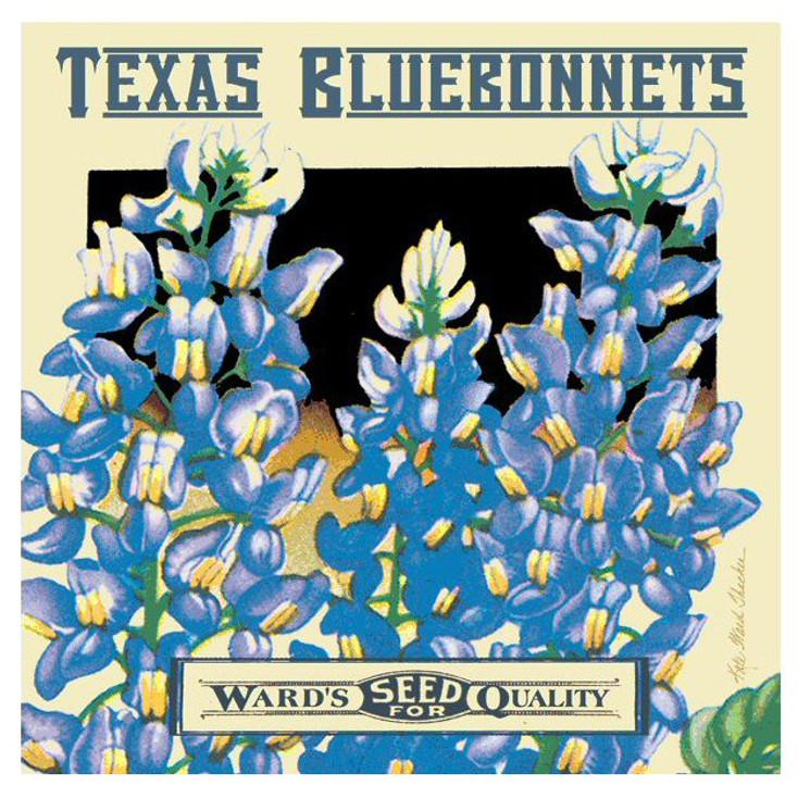 Texas Bluebonnets Seed Beverage Coasters by K. Ward Thacker, Set of 8