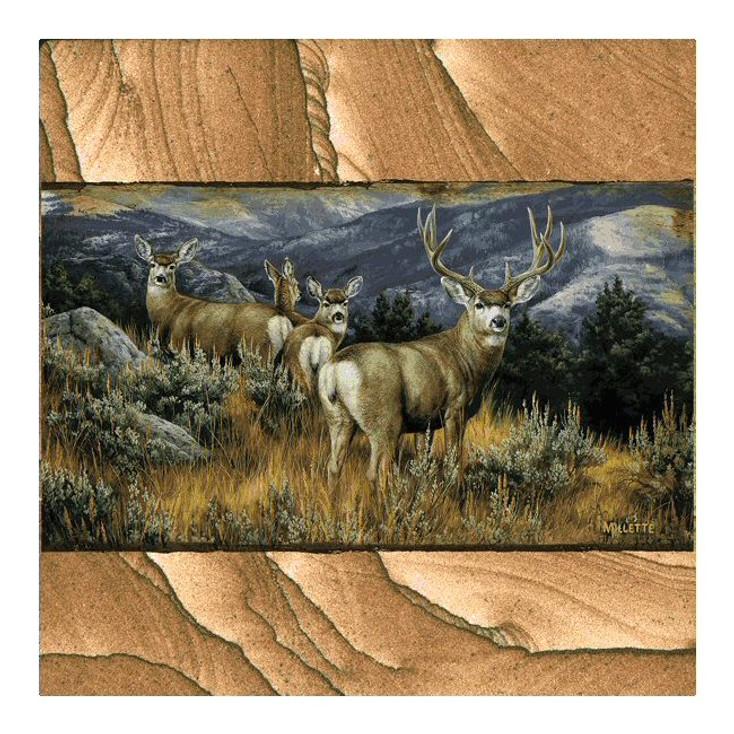 Last Glance Mule Deer Sandstone Coasters by R. Millette, Set of 8