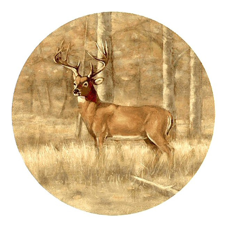 Whitetail Deer Sandstone Beverage Coasters, Set of 8