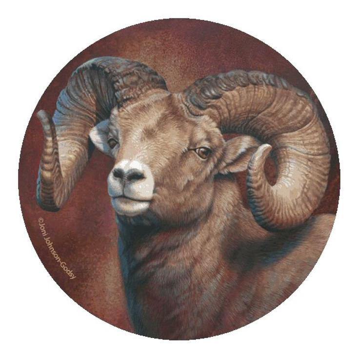Attitude Big Horn Sheep Coasters by Joni Johnson-Godsy, Set of 8