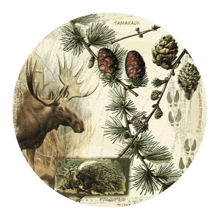 Bull Moose Collage Sandstone Coasters by Kate Ward Thacker, Set of 8