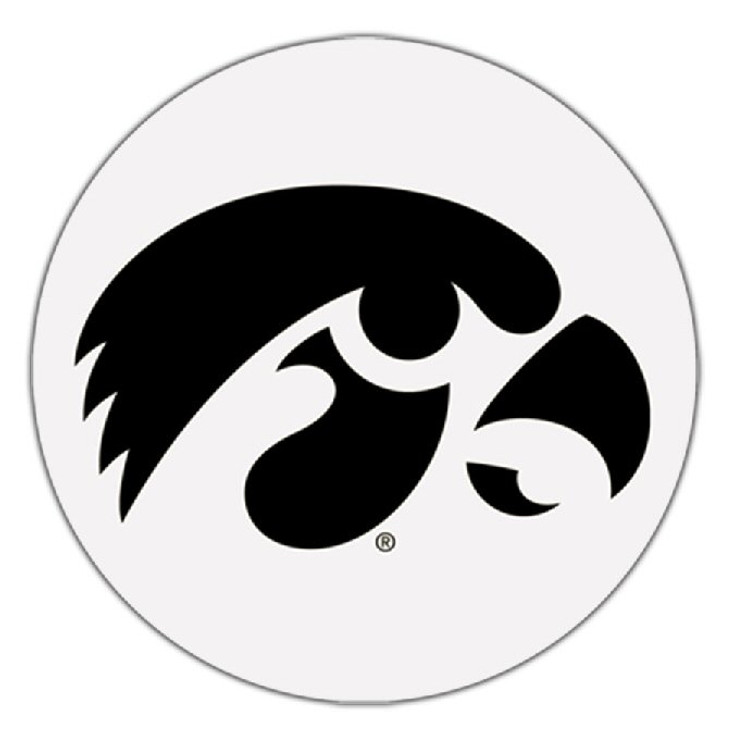 Iowa Hawkeyes Absorbent Beverage Coasters, Set of 8